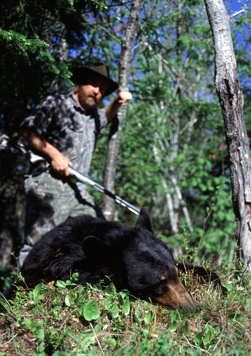 Some of the Largest Hunter Killed Animals in North America