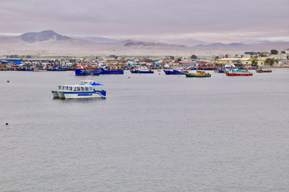 The fishing town of Caldera is one of the few coastal population centers in the southern Atacama Desert.(Photo by Mark Johanson via TNS/Chicago Tribune)