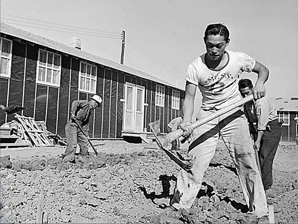 Japanese American men dig a drainage ditch near the barracks at Rohwer Relocation Camp in 1942. (AP)