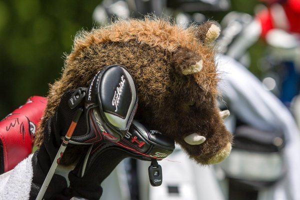 A Razorback head cover sits in a golf bag at Pinnacle Country Club in Rogers during practice rounds for the Walmart NWA Arkansas Championship.