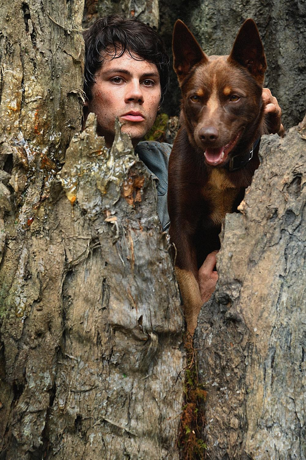 "Apocalypse survivor Joel (Dylan O'Brien) leaves the safety of his underground colony and sets off with his new friend Boy (Hero, an Australian Kelpie) to find his old high school girlfriend in ""Love and Monsters."""