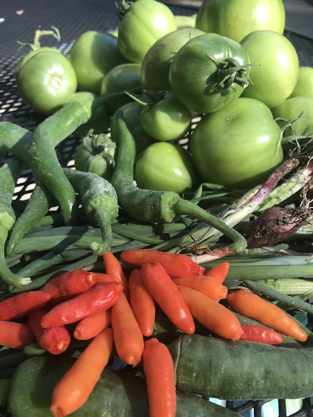 Fall vegetables can brighten up any meal, says the University of Arkansas at Pine Bluff's 1890 Cooperative Extension Program.  (Pine Bluff Commercial/Dale Ellis)
