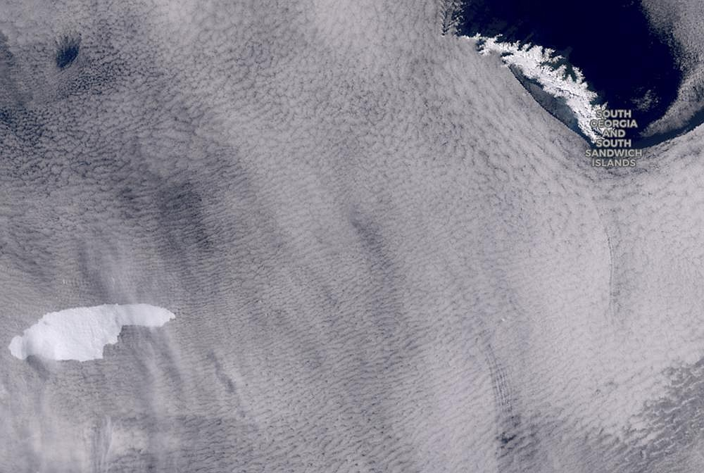 In this graphic provided by the European Space Agency shows an iceberg floating toward the sub-Antarctic island of South Georgia. (Ap/European Space Agency/Copernicus Sentinel)