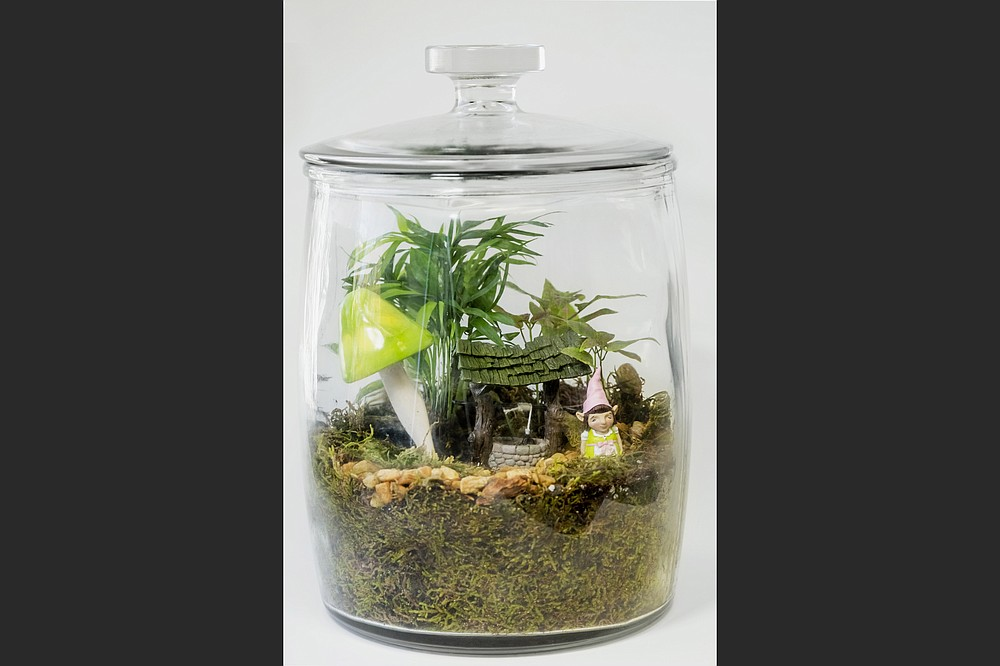 Terrariums make interesting holiday gifts or fun projects to do with a child. See instructions at arkansasonline.com/1219jar. (Democrat-Gazette file photo)