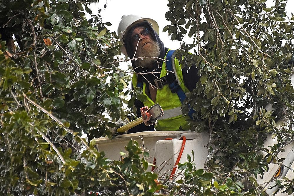Rick Ingram, a foreman for West Tree Services, works amid the ice Thursday as he trims branches around a power line in Jefferson County. More photos at arkansasonline.com/212weather/. (Arkansas Democrat-Gazette/Staci Vandagriff)