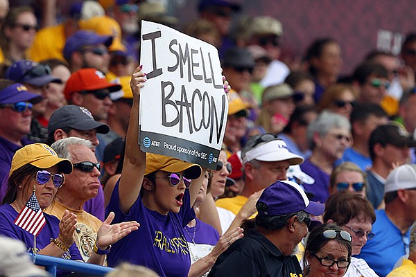 An LSU fan holds up a sign during the first inning of the championship game against Arkansas in the Southeastern Conference NCAA college baseball tournament, Sunday, May 28, 2017, in Hoover, Ala. (AP Photo/Butch Dill)