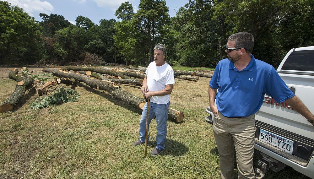 Ronnie Bowen (left), owner of a private logging company, and Bradley Stewart with Springdale Water Utilities talk Wednesday, June 17, 2020, on a forest management site owned by Springdale Water Utilities. Go to nwaonline.com/photos to see more photos. (NWA Democrat-Gazette/Ben Goff)