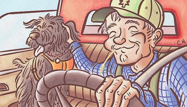 ASK THE VET: Dogs are not safe in the bed of a pickup truck