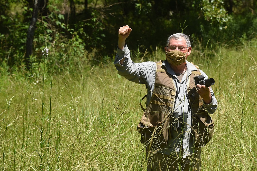 Neal rejoices at seeing a wild turkey to add to his long list of seen seen during a morning bird-watching trip on June 12 2020 to Pea Ridge National Military Park. (NWA Democrat-Gazette/Flip Putthoff)