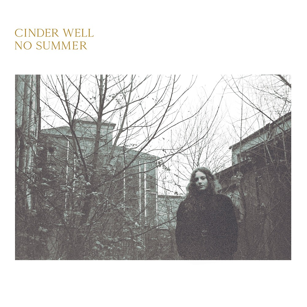 """The cover of Cinder Well's """"No Summer"""""""