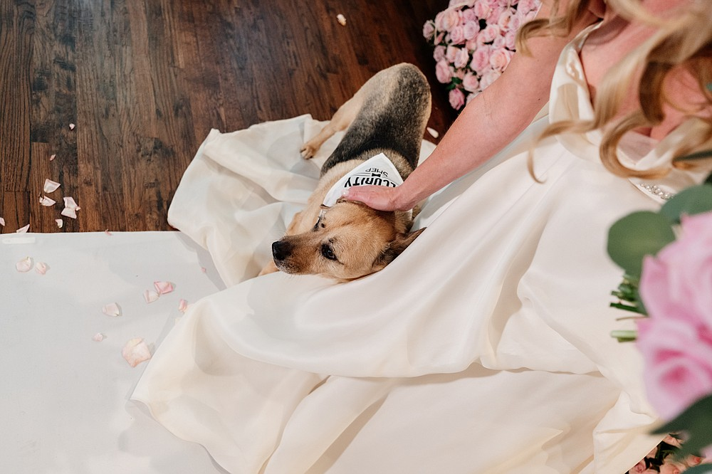 Tara Harper pets her dog, Security, at her wedding, Fort Worth, Texas, July 11, 2020. Harper knew Rahr was the one after he volunteered to join her on a trip to rescue a German shepherd  and then gave it a bath. (Zerb Mellish/The New York Times)