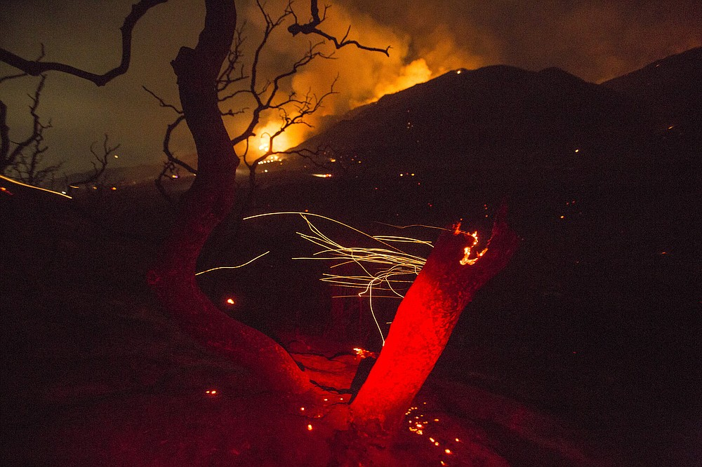 The wind whips embers from a tree burned by a wildfire Yucaipa, Calif., Saturday, Sept. 5, 2020. Three fast-spreading California wildfires sent people fleeing Saturday, with one trapping campers at a reservoir in the Sierra National Forest, as a brutal heat wave pushed temperatures into triple digits in many parts of state. (AP Photo/Ringo H.W. Chiu)