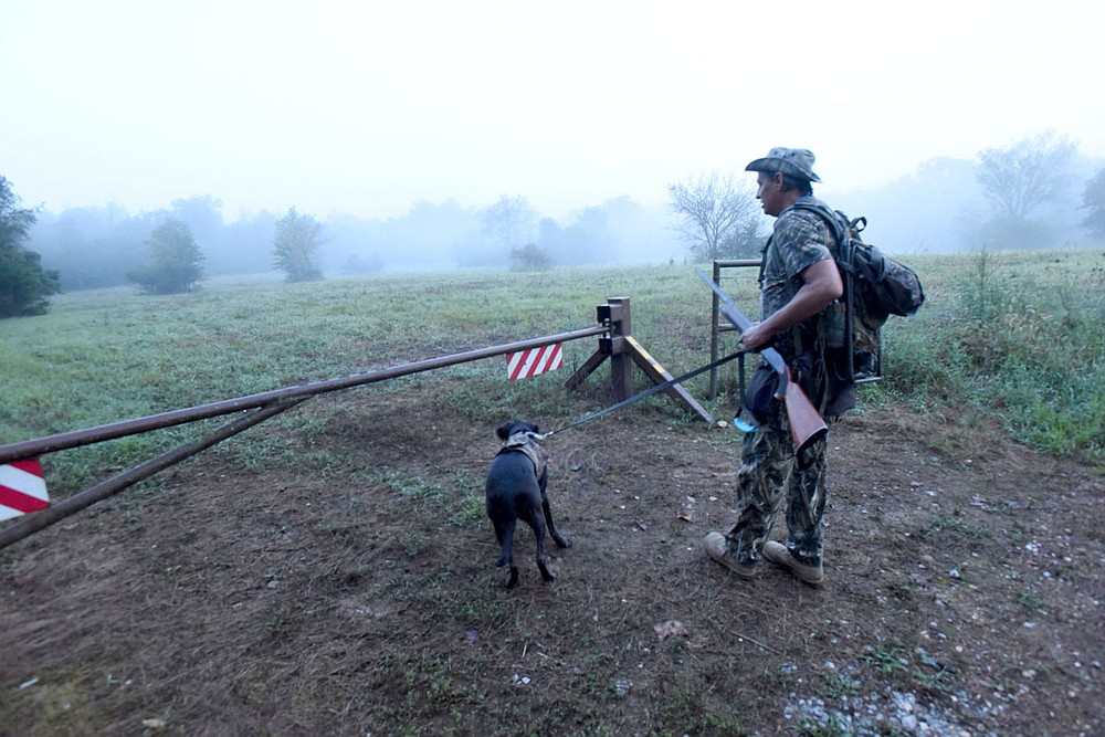 A hunter and his retriever enter one of the Arkansas Game and Fish Commission public dove hunting fields on opening morning Sept. 5 2020 east of Siloam Springs. (NWA Democrat-Gazette/Flip Putthoff)