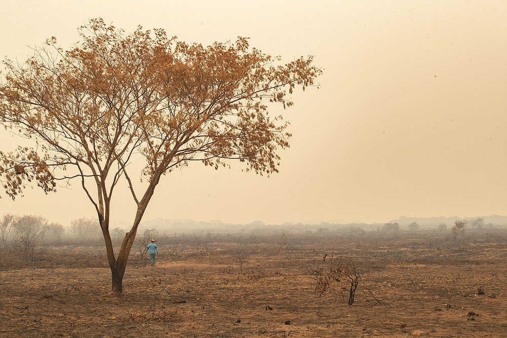 An recently burned area at the Encontro das Aguas park at the Pantanal wetlands near Pocone, Mato Grosso state, Brazil, Saturday, Sept. 12, 2020. Wildfire has infiltrated the park as the number of fires at the world's biggest tropical wetlands has more than doubled in the first half of 2020, according to data released by a state institute. (AP Photo/Andre Penner)