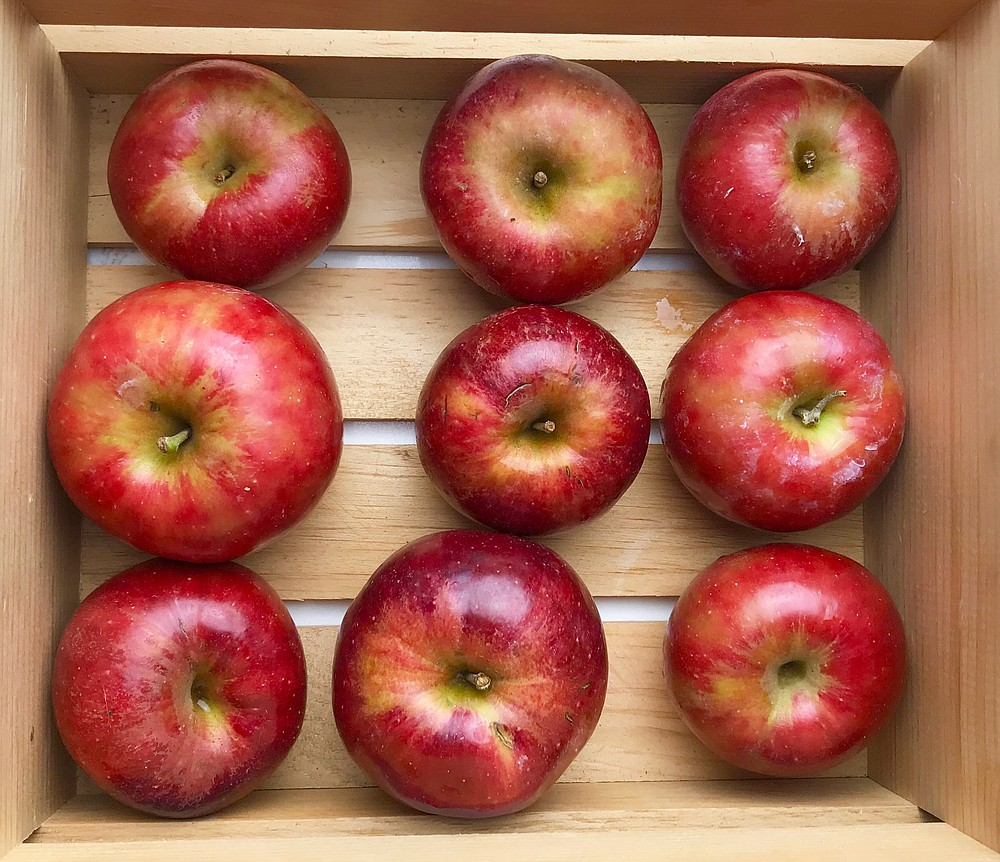 Arkansas-grown Jonathan apples  (Arkansas Democrat-Gazette/Kelly Brant)