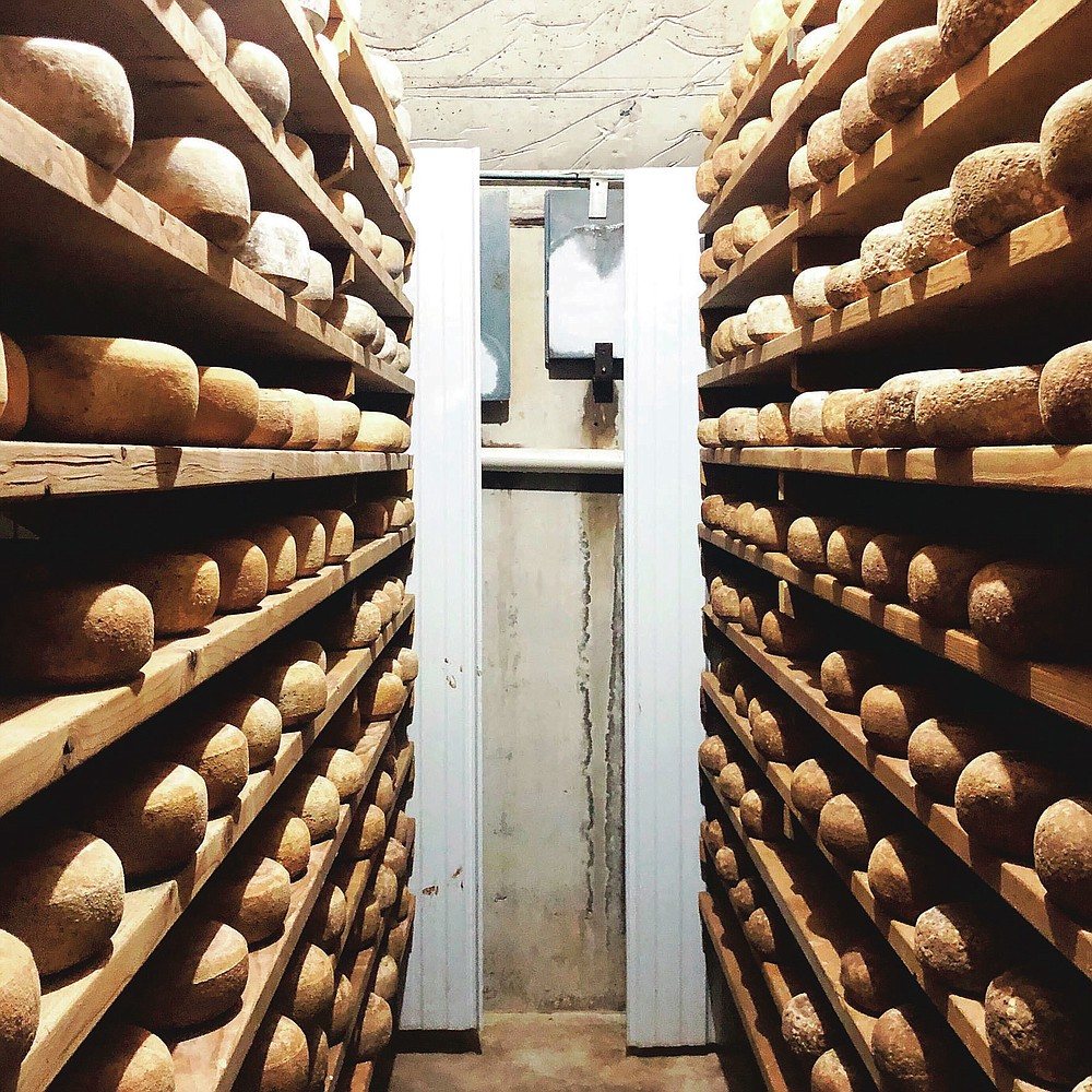 The spruce wood shelves are stocked with wheels of Butta Schaf Kase, a Pecorino-style sheep's milk cheese made and aged in the underground cave at Goot Essa in Howard, Pa., Wednesday, Oct. 7, 2020. (Craig LaBan/The Philadelphia Inquirer via AP)