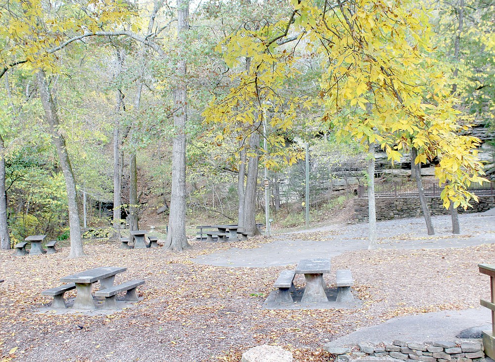 Keith Bryant/The Weekly Vista Bright yellow leaves hang over the Blowing Springs pavilion while freshly-fallen leaves litter the ground.
