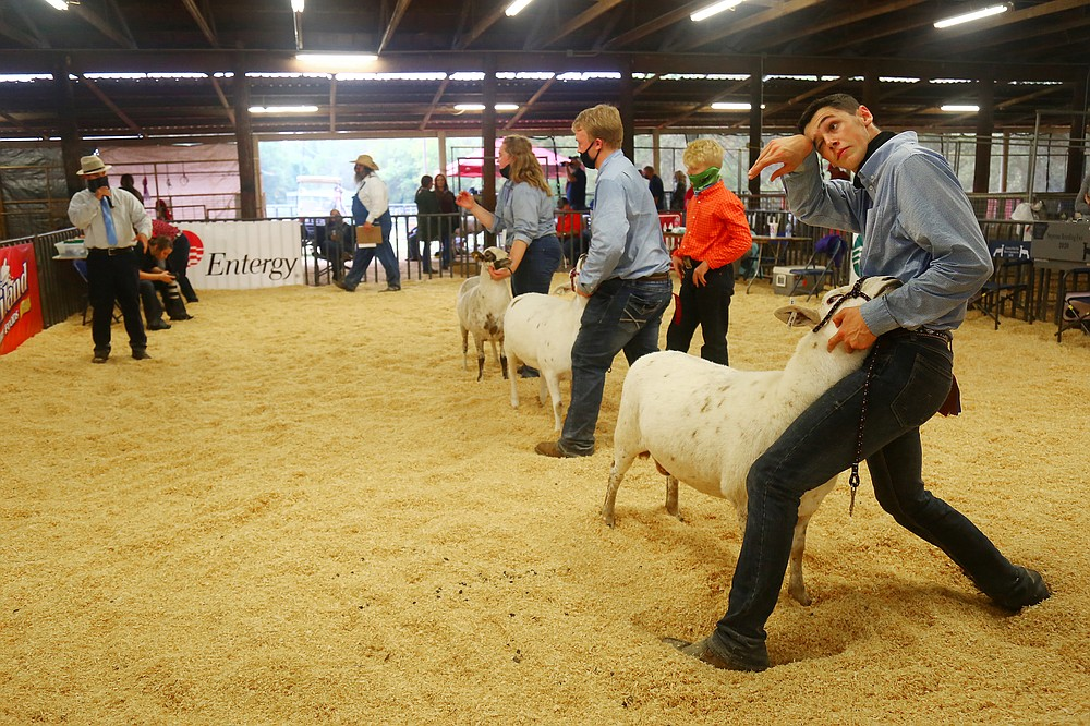 Members of Arkansas 4-H and Arkansas Future Farmers of America gather at the Arkansas State Fairgrounds for 10 days in October to exhibit livestock they raised throughout the year.  (Special to The Commercial/Ryan McGeeney)