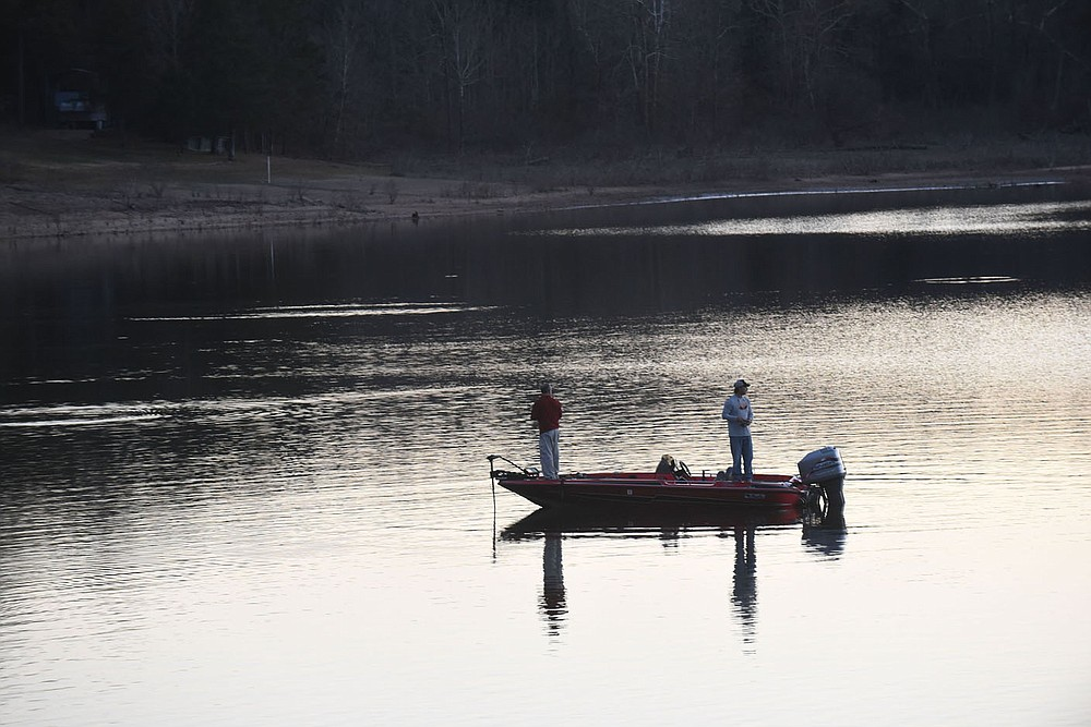 Threadfin shad, a major food source for all game fish at Beaver Lake, are seen flipping on the surface near anglers during a past autumn in a cove near Rocky Branch park. Locate shad and game fish are usually around them. (NWA Democrat-Gazette/Flip Putthoff)
