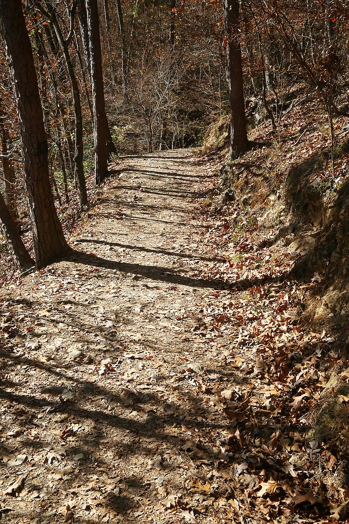 The trails at Lake Catherine State Park are a huge draw for locals and hiking enthusiasts alike. - Photo by Corbet Deary of The Sentinel-Record