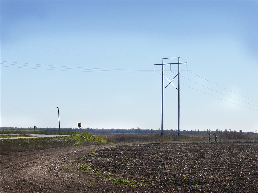 With Arkansas 4 to the left, birders walk down a turn row to see the rare flycatcher perched on power lines. (Special to the Democrat-Gazette/Jerry Butler)