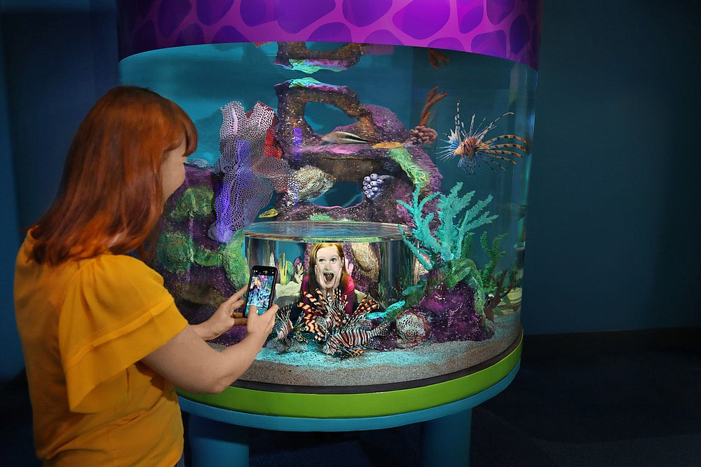 Visitors to Branson's brand-new Aquarium at the Boardwalk can get into the exhibits in a variety of ways. (Courtesy Photo)
