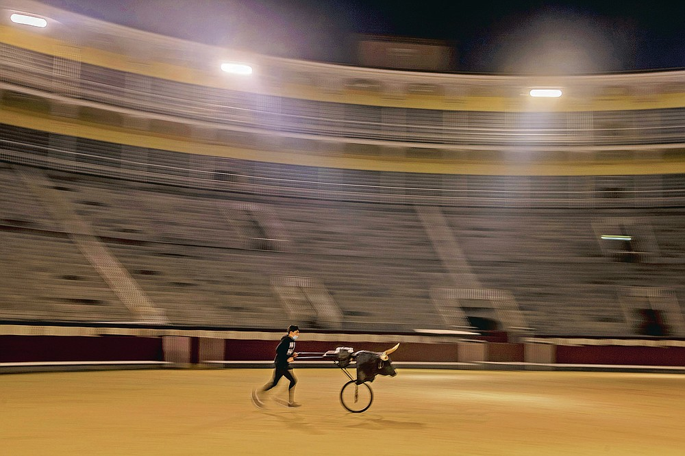 A pupil practices with a 'Carreton' (bulls horns attached to a metal frame with wheels) at the Bullfighting School at Las Ventas bullring in Madrid, Spain, Tuesday, Dec. 22, 2020. Bullfighting, whose decline in Spain corresponds with a rise in an interest for animal rights, has barely come back since the lockdown, with the public still not allowed into large outdoor events just like professional sporting events. (AP Photo/Manu Fernandez)