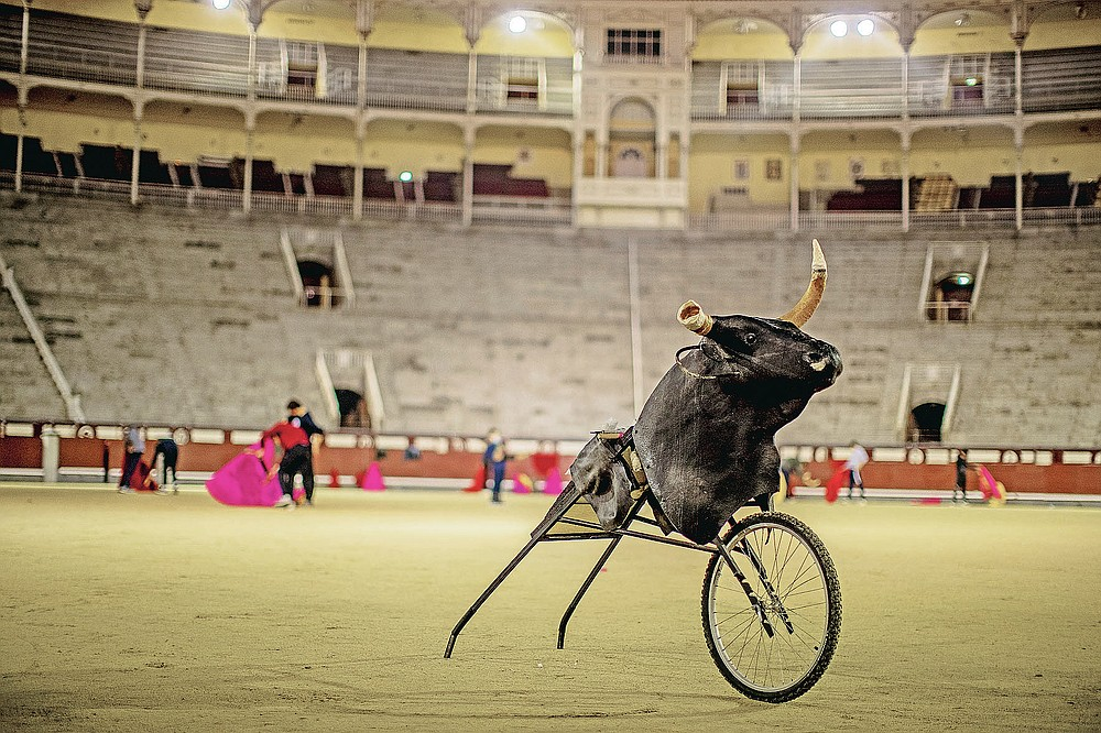 A 'Carreton' (bulls horns attached to a metal frame with wheels) is pictured as pupils practice at the Bullfighting School at Las Ventas bullring in Madrid, Spain, Tuesday, Dec. 22, 2020. (AP Photo/Manu Fernandez)
