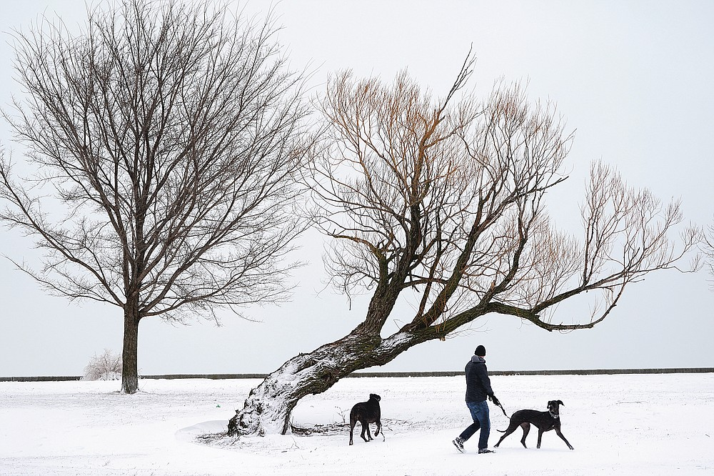 Zarin Taylor walks his two Great Danes, Dottie and Terrabella near Lake Michigan on the Northside of Chicago Tuesday, Jan. 26, 2021. A major winter storm dumped more than a foot of snow on parts of the middle of the country stretching from central Kansas northeast to Chicago and southern Michigan.(AP Photo/Charles Rex Arbogast)