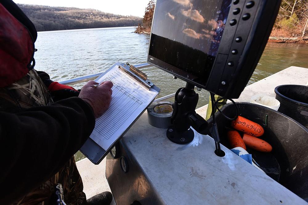 Jon Stein jots down data as fish are measured and weighed. (NWA Democat-Gazette/Flip Putthoff)
