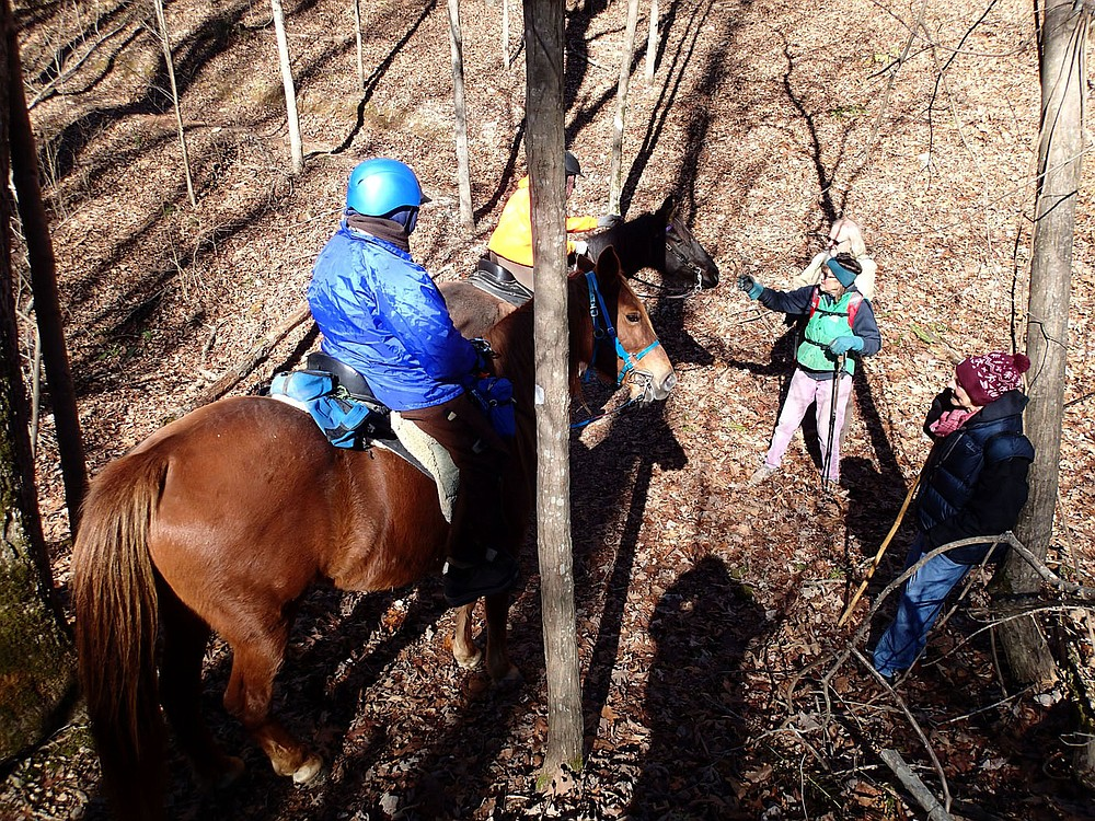 HIkers greet horseback riders along the War Eagle Valley Loop. The 6-mile trail is open for hiking, horseback riding and mountain biking. (NWA Democrat-Gazette/Flip Putthoff)