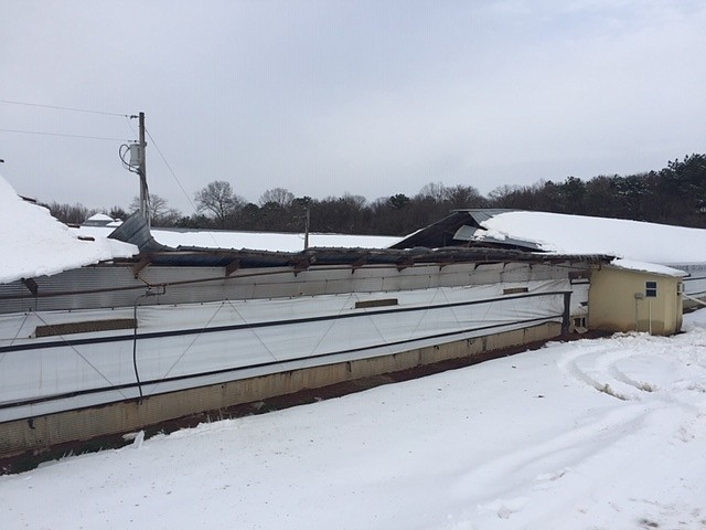 More than 30 poultry houses collapsed this week in Lincoln County. (Special to The Commercial/Steven Stone)