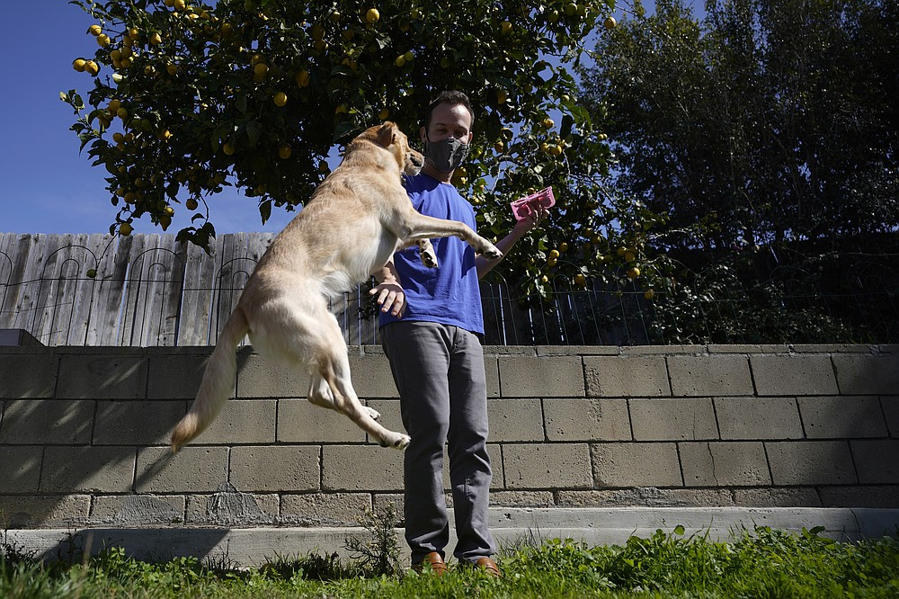 Alex Willen brings out treats for his dogs at his home, Thursday, Feb. 11, 2021, in San Diego. Willen was preparing to open a dog boarding business when the pandemic hit. Willen sensed the virus outbreak wouldn't end quickly, which meant dog owners wouldn't be traveling and many would keep working at home, eliminating the need for his services. He decided to restart a business he'd shelved in favor of boarding, dog treats. (AP Photo/Gregory Bull)