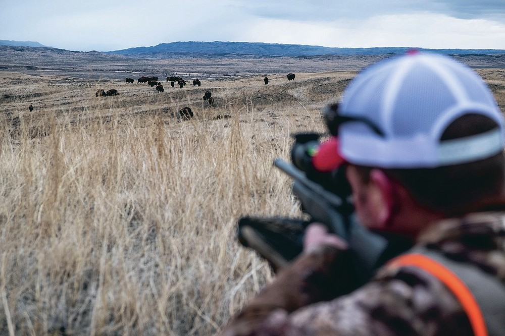 CORRECTS DATE TO  JAN. 17, 2021 Brian Meyer sights his rifle in on a herd of bison during a bison hunt on the American Prairie Reserve in northeastern Montana on Jan. 17, 2021. A love of hunting propelled the 39-year-old Meyer to the remote prairie of Eastern Montana. Wounded Warriors Outdoors arranged for Meyer to participate in a donated bison harvest on land owned by American Prairie Reserve. (Thom Bridge/Independent Record via AP)