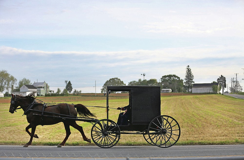 Bishop Marvin and his wife, Stella, of the Old Order Stauffer Mennonite Church, steer their horse-drawn buggy toward church for their first in-person service since the state's COVID-19 lockdown order, Sunday, May 17, 2020, in New Holland, Pa. (AP Photo/Jessie Wardarski)