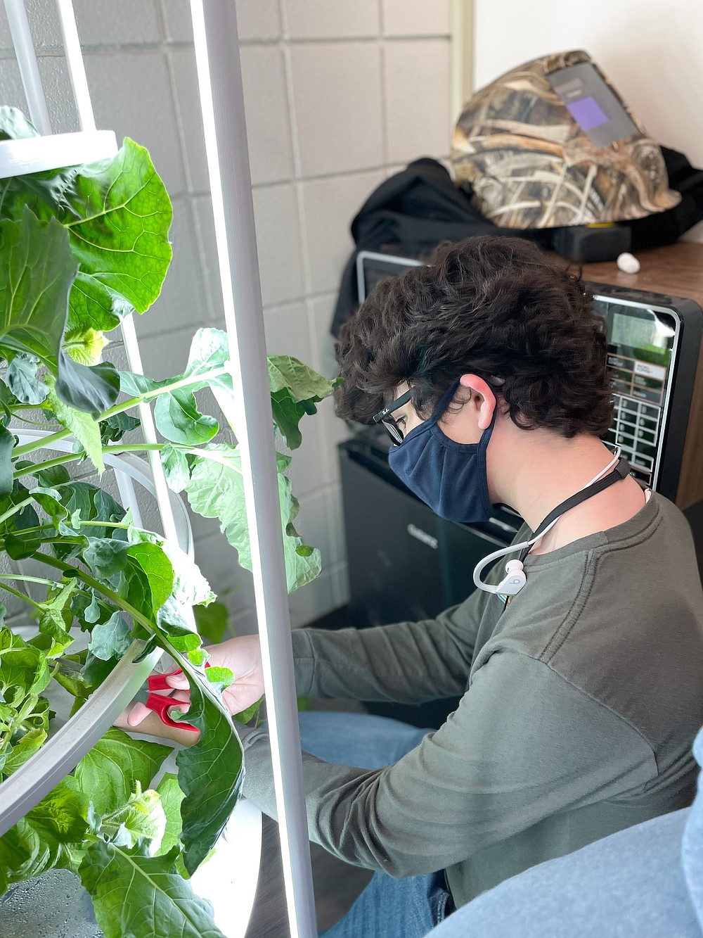 Conner Menard, a White Hall High School ninth-grader, cares for plants in a hydroponic garden. (Special to The Commercial)