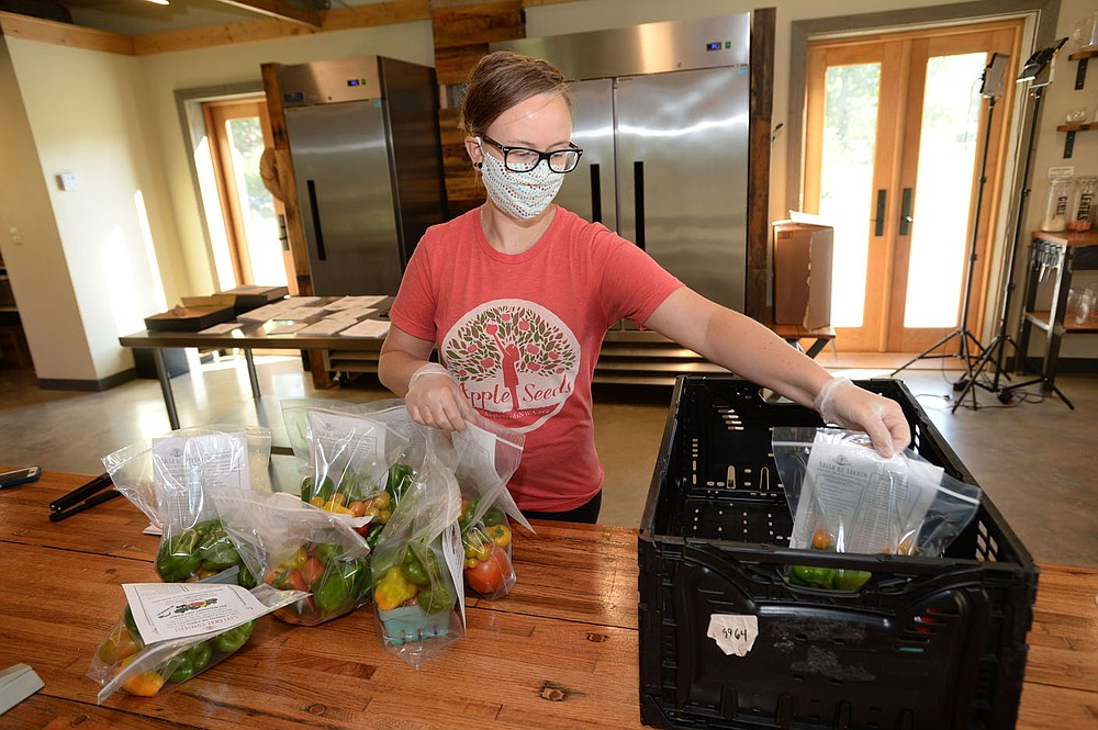Becky Miller, farm-to-table manger for Apple Seeds, places bags of vegetables bound for West Fork Public Schools in a bin Thursday, July 23, 2020, at the Apple Seeds Teaching Farm in Fayetteville. Visit nwaonline.com/200724Daily/ for today's photo gallery. (NWA Democrat-Gazette/Andy Shupe)