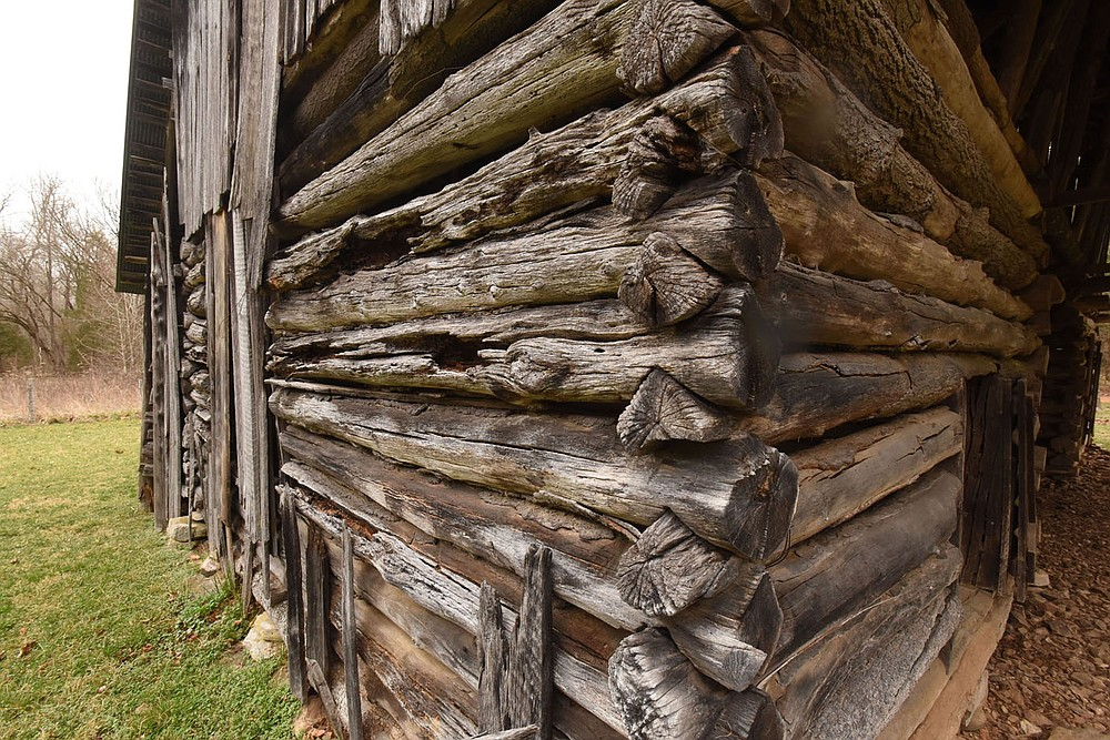 Logs notched by hand fit together     March 12 2021  on a barn at the farmstead. (NWA Democrat-Gazette/Flip Putthoff)