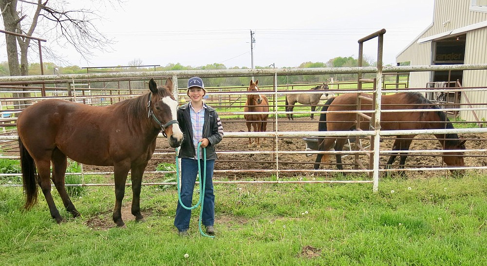 Westside Eagle Observer/SUSAN HOLLAND Landyn Perrine, 12, of Gravette, pauses for a moment to pose with her main mount, Flo Jo, an AQHA registered quarter horse mare she rides in barrel racing and pole bending competition. In the pen behind her are some of her other horses including Hollywood (right), an all-around horse, and Cobra (right rear), another gelding she is developing for breakaway roping.