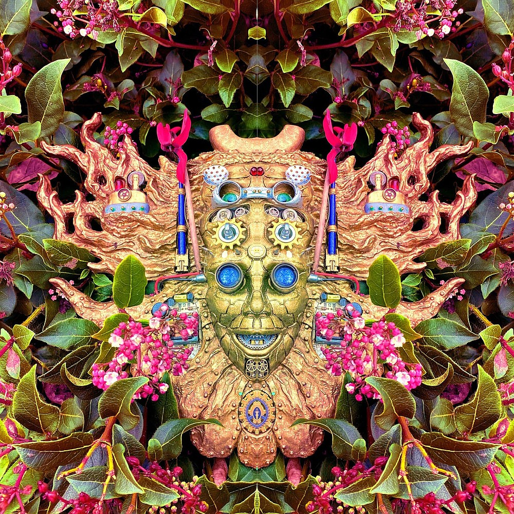 """Carnival of Peculiarities""  Shpongle"