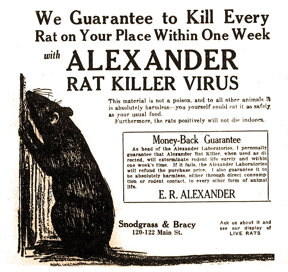 Advertised in the June 20, 1921, Arkansas Democrat, the so-called virus likely was salmonella and dangerous to people as well as rats. (Arkansas Democrat-Gazette)