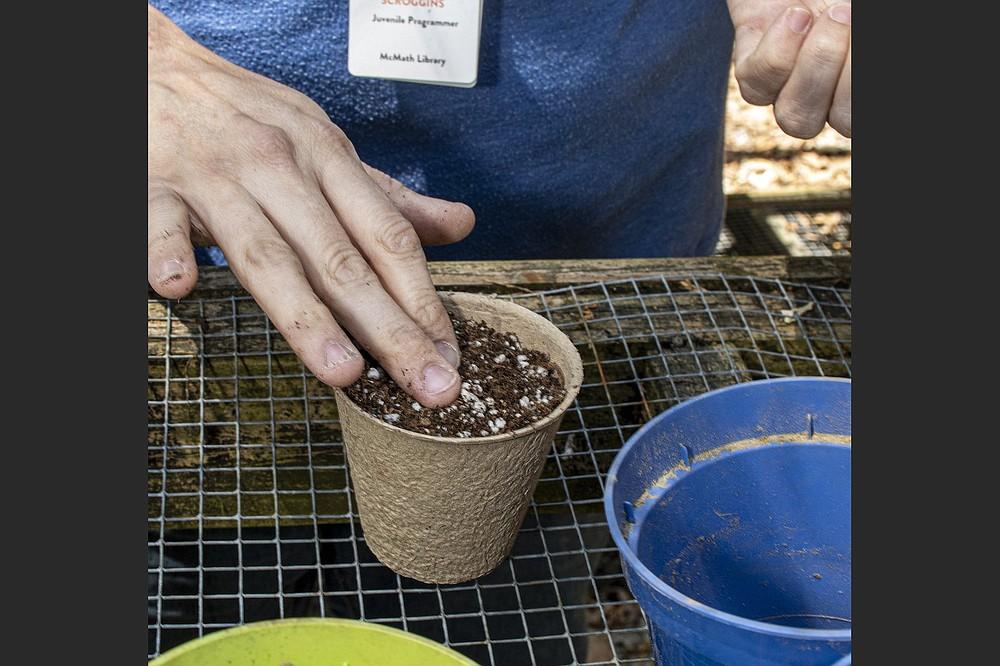 Vanessa Scroggins plants seeds from the seed library. (Arkansas Democrat-Gazette/Cary Jenkins)