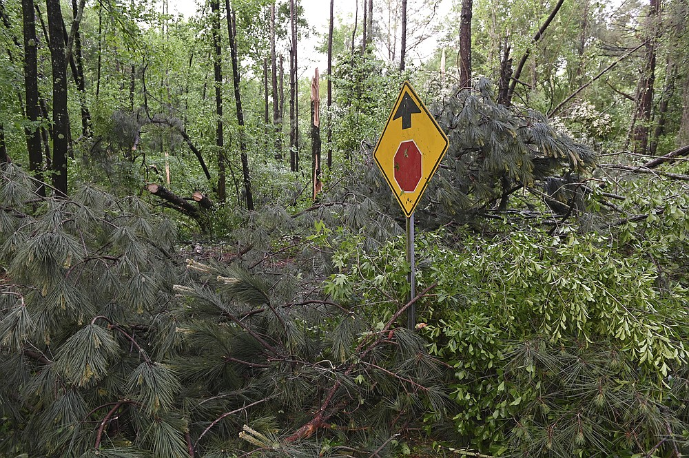 """Downed trees cover Oakview Drive in Tupelo, Miss., Monday, May 3, 2021. A line of severe storms rolled through the state Sunday afternoon and into the nighttime hours. Late Sunday, a """"tornado emergency"""" was declared for Tupelo and surrounding areas. (AP Photo/Thomas Graning)"""
