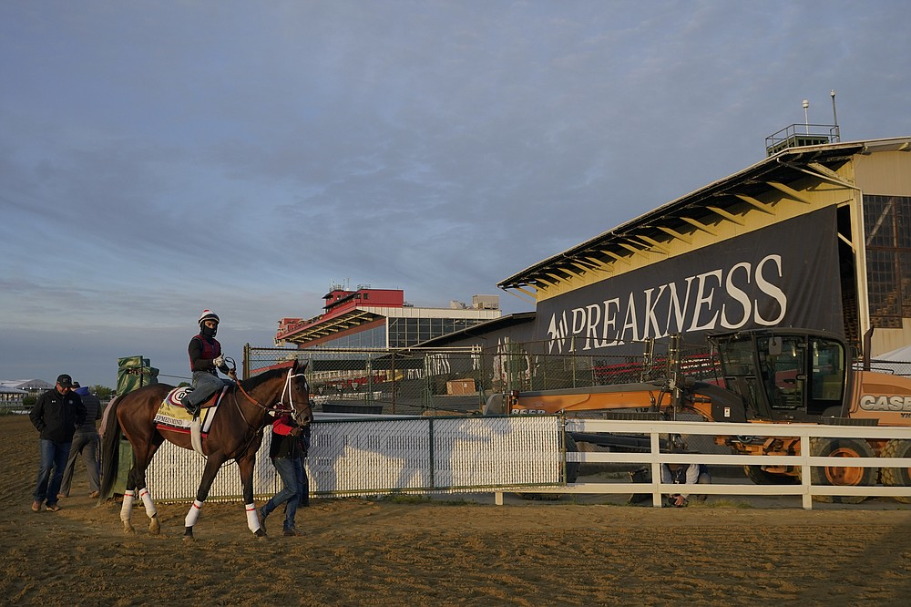 Preakness entrant Keepmeinmind leaves the track after working out during a training session ahead of the Preakness Stakes horse race at Pimlico Race Course, Wednesday, May 12, 2021, in Baltimore. (AP Photo/Julio Cortez)