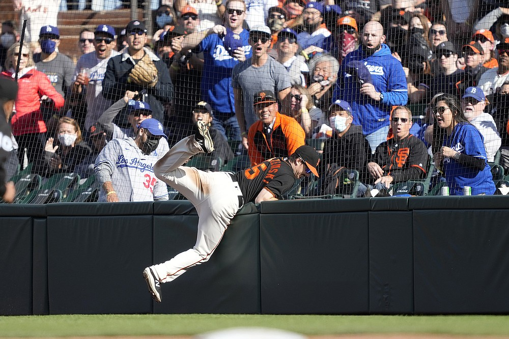 San Francisco Giants right fielder Mike Yastrzemski collides with the fence after making the catch on a popup fly by Los Angeles Dodgers' Walker Buehler during the fifth inning of a baseball game Saturday, May 22, 2021, in San Francisco. (AP Photo/Tony Avelar)