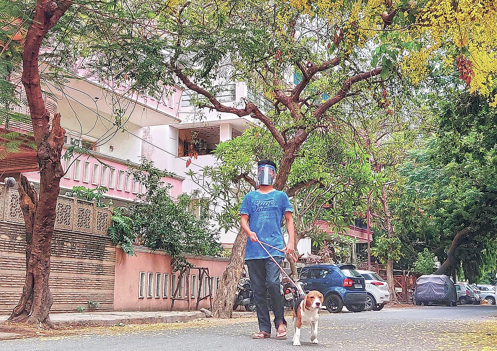 Abhimanyu Chakravorty, son of 73-year-old Prabir Chakravorty, a COVID-19 survivor, takes his dog for a stroll outside his home in New Delhi, India on May 17, 2021. Prabir Chakravorty, the family patriarch and widower, a construction executive was treated at home for the coronavirus. (AP Photo/Aniruddha Ghosal)
