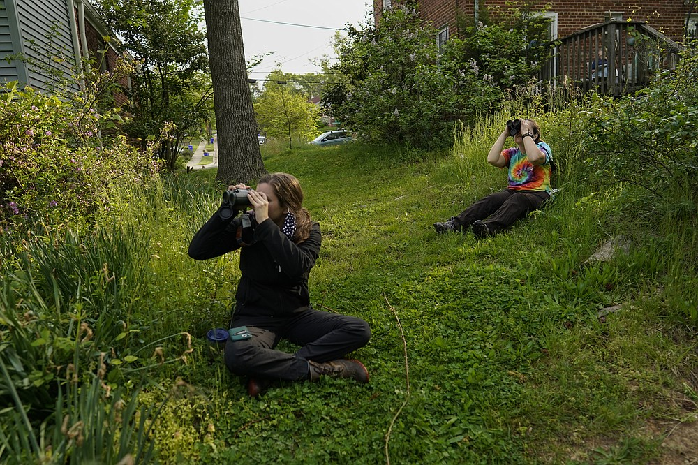 Avian ecologist and Georgetown University Ph.D. student Emily Williams, right, and a volunteer watch bird netting with binoculars from distance for American robins, Wednesday, April 28, 2021, in Cheverly, Md. (AP Photo/Carolyn Kaster)