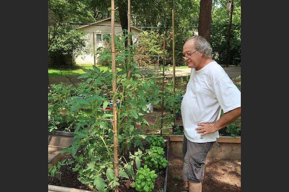 A lifelong teacher, Don Ernst began his innovative experiments with homegrown tomatoes after reading a book. (Special to the Democrat-Gazette/Janet B. Carson)