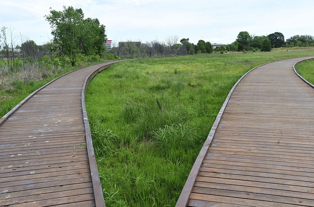 Dry and wet areas can be seen from boardwalks at the 12-acre wetland. (NWA Democrat-Gazette/Flip Putthoff)