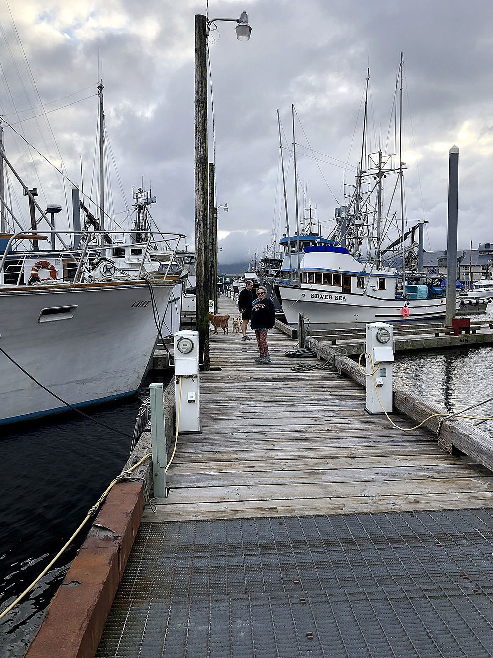 Our host Sally Grace, her friend Bob, and the dogs walk along Ketchikan harbor.